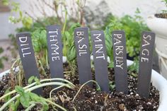 Custom Herb Label Set Of 6 Ceramic Herb Garden Label Herb Sign Garden Art  Pottery Garden Herb Marker Personalized Garden Gifts   Custom Made