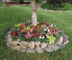 "Amazon.com: Shady Annual Tree Flower Mat - Grow Shady Annual Border Garden Flowers. Includes: (1) Pre-seeded 17"" x 5' Flower Seed Mat. Simp..."