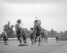 Avatar: 1975 Belmont Stakes winner