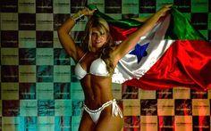 Carine desfilou com uma bandeira que de um lado levava as cores do Pará.... Foto: Alexandre Carvalho/ Fotoarena