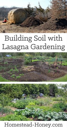 Sheet mulching, or lasagna gardening, is an easy way to build a new garden while building great soil. Plus, you won't disturb the soil! | Homestead Honey
