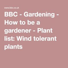 Gardening - How to be a gardener - Plant list: Wind tolerant plants Gardening, Plants, Ideas, Lawn And Garden, Plant, Thoughts, Planets, Horticulture