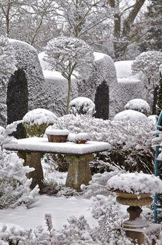 Let it snow ~ Dreamy Nature