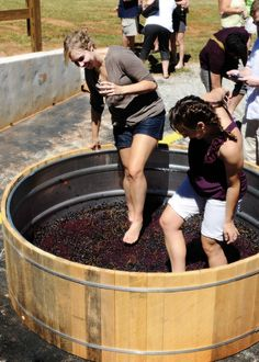 Stompin' the Grapes at Crush Fest at Yonah Mt. Vineyards! I can't wait for this year's festival in September!