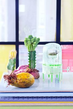 Woontrends 2018: Re-Assemble    De diversiteit van ons leven en de maatschappij worden weerspiegeld in het interieur.  #woontrends #interieur #wonen Cactus Plants, Glass Vase, House Design, Trends 2018, Home Decor, Gardening, Lifestyle, Decoration, School
