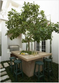 Limoeiro é o destaque central da mesa de concreto./Crédito: Houzz.