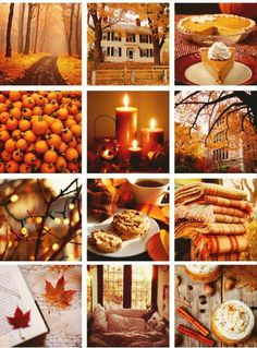 Autumn aesthetic.