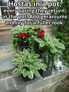 Thrilling About Container Gardening Ideas. Amazing All About Container Gardening Ideas. Garden Yard Ideas, Garden Trees, Lawn And Garden, Garden Projects, Potted Garden, Porch Garden, Garden Cottage, Garden Edging, Garden Bed
