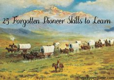 The pioneers were the first people to settle in the frontiers of North America. The majority of pioneers came from Europe, although pioneers had many different jobs. Some were farmers, missionaries…