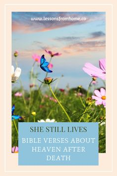If you are looking for ecouragement for yourself or someone you love, you will be blessed by this collection of Bible verses about heaven.  Perfect for the grieving heart.  #grief  #bibleverses  #faith  #hope  #lessonsfromhome Living Bible, Purple Petunias, Encouraging Verses, Christian Meditation, Revelation 22, Bible Study Tips, Beautiful Songs, Christian Inspiration, Powerful Words