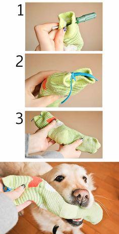 aea3f415c6 Como fazer um brinquedo barato para o seu cachorro