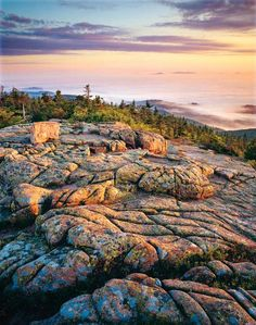 Acadia National Park - I have never been to the Northeast of the U.S. but would love to explore there one day.