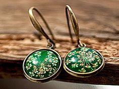 Echte Blüten Ohrringe grasgrün. Ohrringe mit echten getrockneten Blüten von der wilden Möhre, eingegossen in grasgrünes Glasharz.  Bronzefarbene Fassung. Nickelfrei.