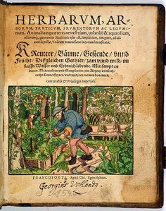 Rare first dated edition of an extensively illustrated early herbal in contemporary hand-colour, with the title and most of the plant and animal names in Latin and German.