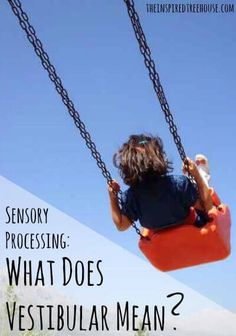 This site is a tool that OTs can reference when explaining to parents how the vestibular system works, while also giving parents ideas of how to play at the playground in a manner that will help develop the vestibular system. Sensory Motor, Sensory Rooms, Sensory Diet, Sensory Issues, Sensory Play, Vestibular Activities, Vestibular System, Movement Activities, Sensory System