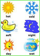 math worksheet : opposites  free printable preschool and kindergarten worksheets  : Opposites Worksheet For Kindergarten