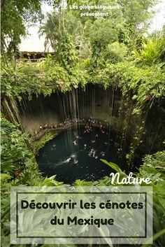 Découvrez les extraordinaires formations géologiques typiques du Yucatan : les cénotes