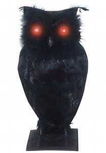 Halloween Owl - Bing images