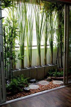 Des bambous pour se protéger du vis à vis sur le balcon