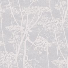 Click To Zoom In - Cole & Son Cow Parsley (95-9049)