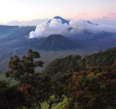 Gunung Bromo volcano / East Java, Indonesia