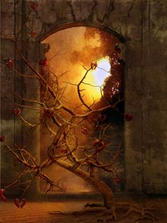 portal to another world