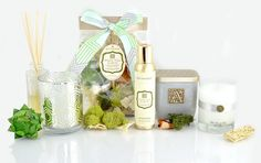 Aromatique's White Teak and Moss Fragrance- A Clean Blend of Shimmering Water with Notes of Moss and Teak Wood. Pictured Here: Diffuser Oil with Reeds, Silver Metallic Candle, Decorative Fragrance, Aerosol Room Spray, 2-Wick Candle, and Our Candle in Glass.