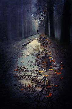 It is good to be solitary, for solitude is difficult; that something is difficult must be a reason the more for us to do it. ~Rainer Maria Rilke~