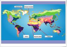 """""""Ecosistemas del mundo"""" (Ciencias Naturales de Primaria). Editorial S.M. Videos, Science, Map, World, Editorial, Nature, Biomes, Socialism, School"""