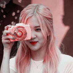 Aesthetic Roses, Kpop Aesthetic, Aesthetic Girl, Rose Tumblr, Foto Rose, Rose Icon, Rose Park, Black Pink Kpop, Rose Wallpaper