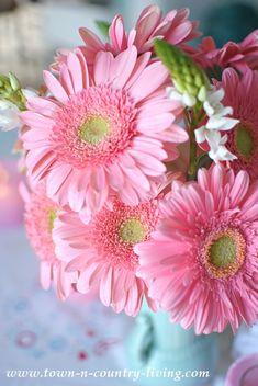 Love how pink daisies look in aqua vase