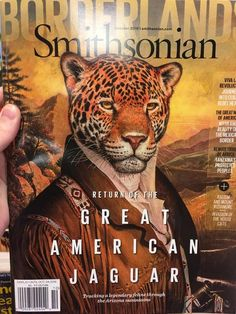 The story of tracking a legendary feline named El Jefe through the Arizona mountains Arizona Mountains, Animal Magazines, Tidy Cats, List Of Animals, Interesting Topics, Animal Welfare, Mythical Creatures, Science Nature, Jaguar