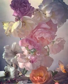 Alexander Fury: Nick Knight's Unreal, Surreal Images of Roses Nick Knight Photography, Art Photography, Photography Flowers, Rose Photos, Flower Images, Flower Photos, Tumblr, Art Blog, Flower Power