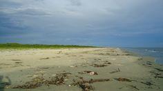 Ilha de Superagui (PR) - FuiAcampar