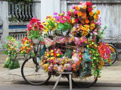 Christmas in Hoi An | The Vietnam blog