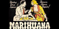 Molti presumono che, da qualche parte nel mondo e in un momento dato, ci sia stato qualcuno che con prove scientifiche alla mano abbia dedotto che la cannabis fosse molto più letale di qualsiasi altra droga usata allora, più dell'alcool e delle sigarette, per intenderci. Eppure..
