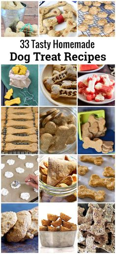 33 Tasty Homemade Dog Treat Recipes - frozen yogurt dog treats, chicken flavored biscuits, oat biscuits, gluten/wheat free treats, and more!  #dogtreats #dogbiscuits