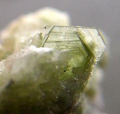 Brucite, Mg(OH)2, Saint-Joseph-de-Coleraine, Les Appalaches RCM, Chaudière-Appalaches, Québec, Canada. Platy brucite crystals to 3 mm.  Copyright: © 2006 Peter Cristofono