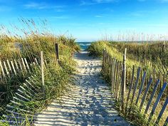 Visit the Currituck Outer Banks, where wild horses roam free, fewer crowds, and family friendly beaches are unspoiled. Start planning your OBX vacation today!