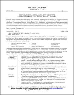 Ceo  Cfo Executive Resume Example  Executive Resume Resume