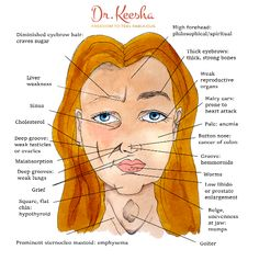 The Ancient Science of Ayurvedic Face Mapping - Dr. Ayurveda, Gesicht Mapping, High Forehead, Button Nose, Face Exercises, Face Mapping, Acne Causes, Strong Bones, Thick Eyebrows