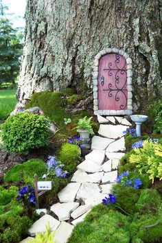 Mini garden and fairy door.Love the background of a massive tree and a delicate pink door. I love the sweet, little blue flowers and the white stones that lead to the fairy door. Fairy Garden Doors, Fairy Garden Houses, Gnome Garden, Fairy Gardens, Miniature Gardens, Fairies Garden, Diy Garden, Garden Path, Fairy Doors On Trees