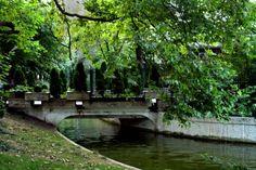 Vă recomandăm Parcul Cișmigiu, pentru plimbări cu hidrobicicleta și pentru locurile pline de vegetație. De asemenea, Grădina japoneză din parc este o oază de liniște care cu siguranță vă va ajuta să vă relaxați. Dacă doriți să vă eliberați de grijile cotidiene, noi vă propunem o tură de alergări.