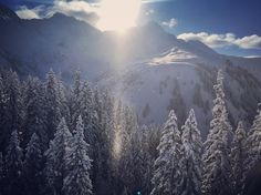 The sun came out to play with the snow. Best Powder, Run Around, Mount Rainier, Christian, Snow, Adventure, Play, Instagram Posts, Travel