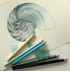 Lisa Le Quelenec Seaside studios paintings, prints and mixed media: Chambered nautilus drypoint etching from a perspex...
