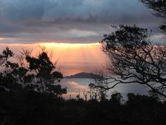 Meet the locals and learn about the heritage and wildlife of D'Urville Island in the Marlborough Sounds, on a sustainable, 4 day guided eco tour. French Pass, Marlborough Sounds, The Locals, Islands, Wildlife, Tours, Sunset, History, Places