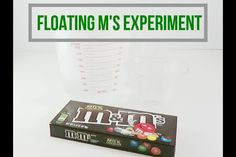 Edible Jello Slime Recipe | Little Bins for Little Hands Easy Science Experiments, Science Activities For Kids, Christmas Activities, Stem Activities, Senses Activities, Christmas Jokes, Popsicle Stick Catapult, Salt Painting, Edible Slime