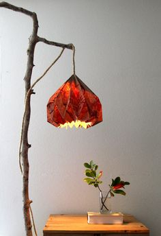 Pretty rustic light crafted with an old Trader Joe's bag as the lamp shade. Reduce reuse recycle!