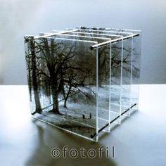 Bildearkiv - Latest images registered:mageID.: gma0001 Title: Cubes, 2001-2005. Plexiglass sculptures, 12 x 12 to 30 x 30 cm, handmade photographic transparencies in layers. Keywords:Trees/Trær. Woods/Skogen. Depth/Dybde. Volume/Volum. Perspective/ Perspektiv. Borrehaugene. Artist: Galina Manikova/BONO. Copyright Fotofil