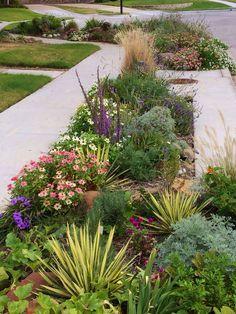 My parkway sidewalk garden